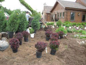 Landscape/Garden Prog. Postponed @ Land O Lakes Library